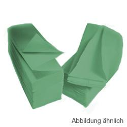 CWS ParadiseLine Faltpapier für Papiertuchspender Karton a 3600 (20x180) Blatt, grün