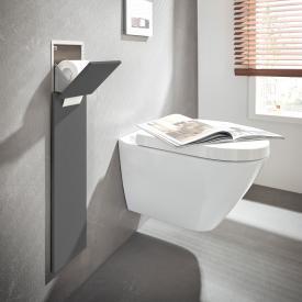 Emco Asis Pure Unterputz-WC-Modul mit Ersatzrollenfach grau matt
