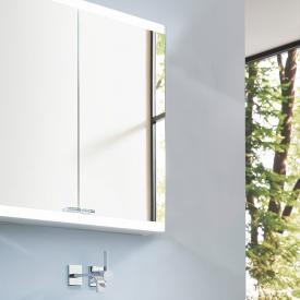 Emco Evo Aufputz Spiegelschrank mit LED-Beleuchtung ohne light system