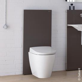 Geberit Monolith Plus Sanitärmodul für Stand-WC H: 114 cm, Glas umbra