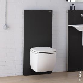 Geberit Monolith Sanitärmodul für Wand-WC H: 114 cm, Glas schwarz