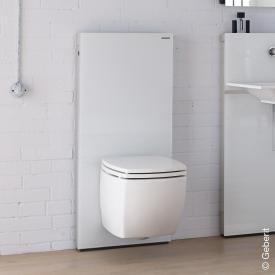 Geberit Monolith Sanitärmodul für Wand-WC H: 114 cm, Glas weiß