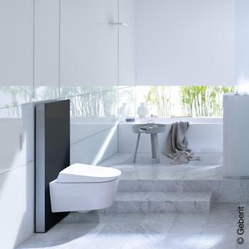 Geberit Monolith Plus Sanitärmodul für Wand-WC, H: 101 cm Glas schwarz