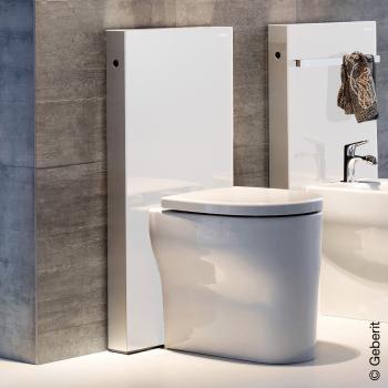Geberit Monolith Sanitärmodul für Stand-WC, H: 101 cm Glas weiß