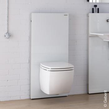 Geberit Monolith Sanitärmodul für Wand-WC, H: 114 cm Glas weiß
