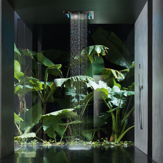 Blumen & Pflanzen fürs Bad: 7 Tipps zu Auswahl & Pflege - Emero Life