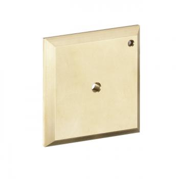 Hansgrohe iControl Spülplatte