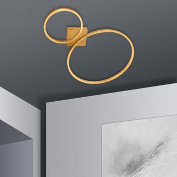 Näve Ring Double LED Deckenleuchte