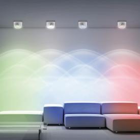 Paul Neuhaus Julian RGBW LED Deckenleuchte/Spot mit Dimmer