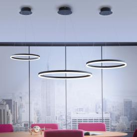 Paul Neuhaus Titus LED Pendelleuchte mit Dimmer