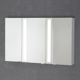 Sprinz Silver-Line Aufputz Spiegelschrank Modell-Nr. 04 Korpus aluminium matt, ohne Hintergrundbeleuchtung