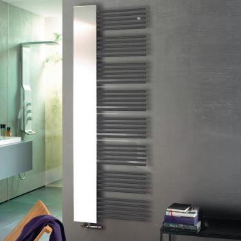 Zehnder Yucca Mirror Badheizkörper mit Spiegel für Warmwasser- oder Mischbetrieb anthrazit, 755 Watt